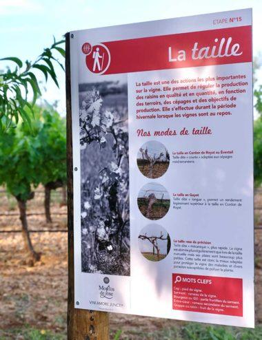 Moulin_de_Lene_Oenotourisme_balade_pedagogique