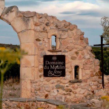 Visite_domaine_viticole